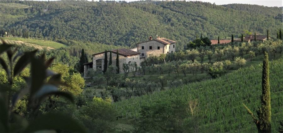 Zur Erklärung des Textes: Weinanbaugebiet bei Radda in Chianti. Pin it Button für das Netzwerk Pinterest.
