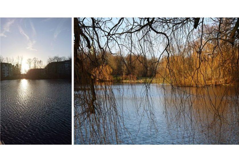 Zur Ergänzung des Textes. Collage mit zwei Fotos vom Schreventeich in Kiel.
