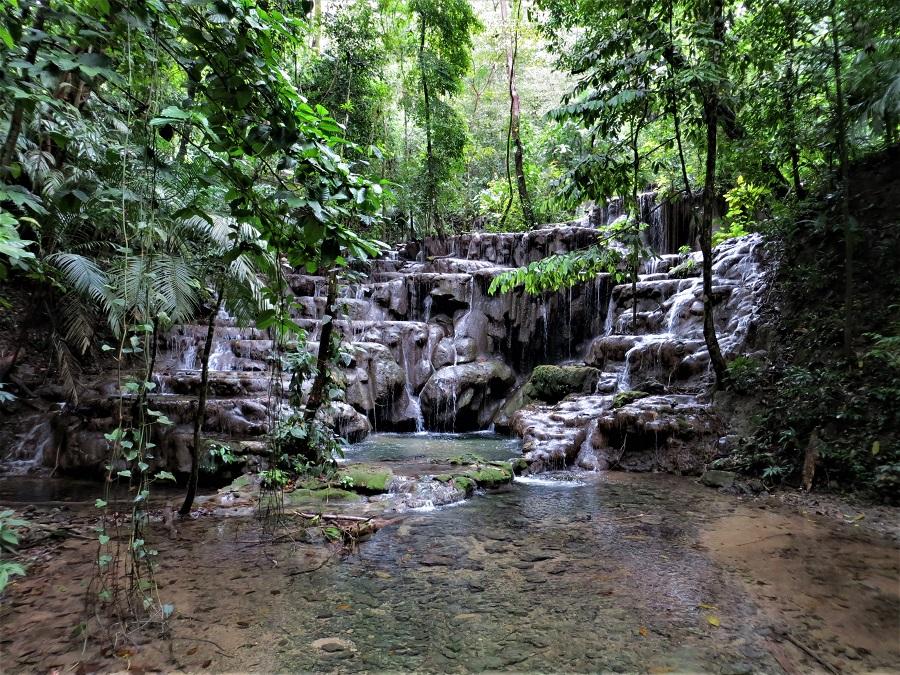 Zur Ergänzung des Textes. Wasserpool bei Palenque.