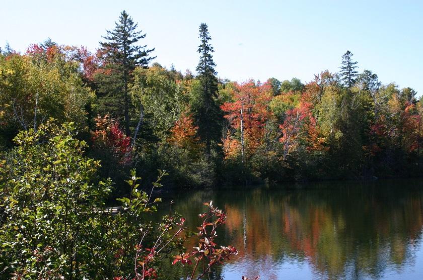 Indian Summer Kanada, Laubfärbung vor einem See